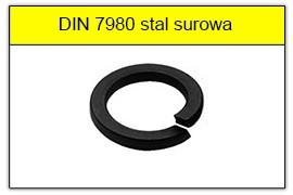 DIN 7980 stal surowa